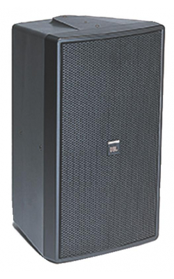 C29AV-1 - Premium Indoor / Outdoor Monitor Speaker