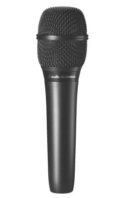 AT2010 - Cardioid Condenser Handheld Microphone