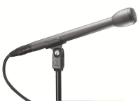 AT8004L - Omnidirectional Dynamic Microphone with Extended Handle